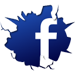 Chameleon FaceBook